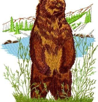 רקמה ממוחשבת דוב