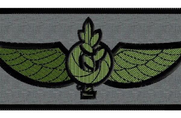 פא'ץ של יחידה צבאית