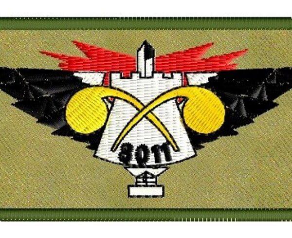 פא'ץ של גדוד 8011